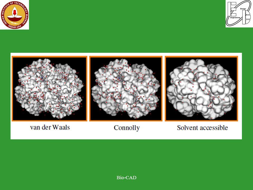 Molecular surface representation Bio-CAD