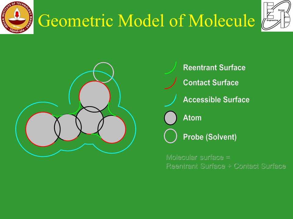 Geometric Model of Molecule Molecular surface = Reentrant Surface + Contact Surface