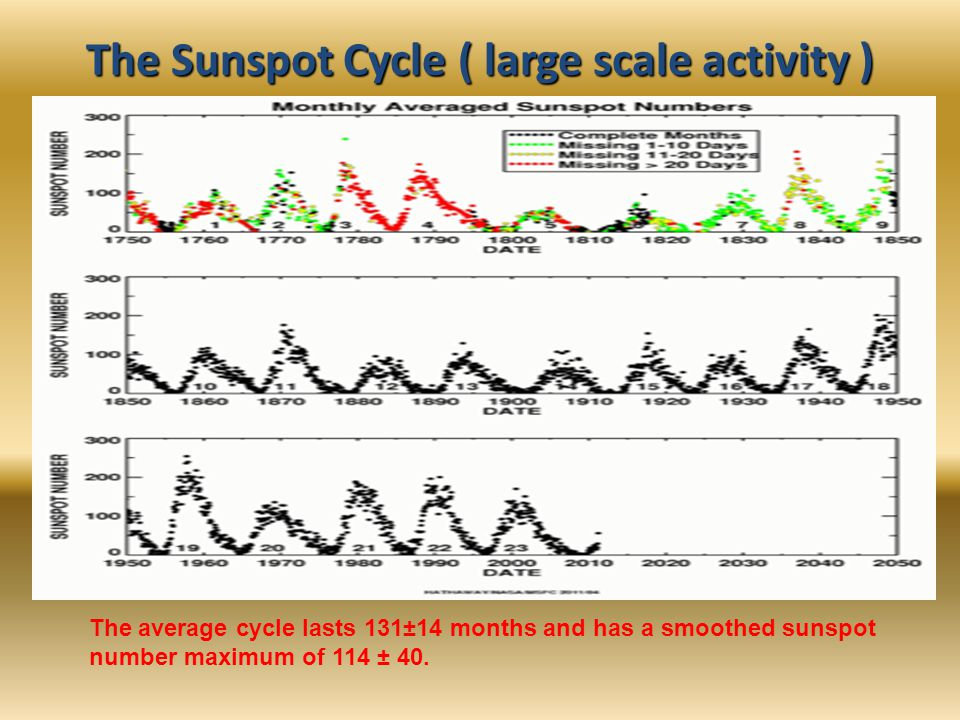The Sunspot Cycle ( large scale activity ) The average cycle lasts 131±14 months and has a smoothed sunspot number maximum of 114 ± 40.