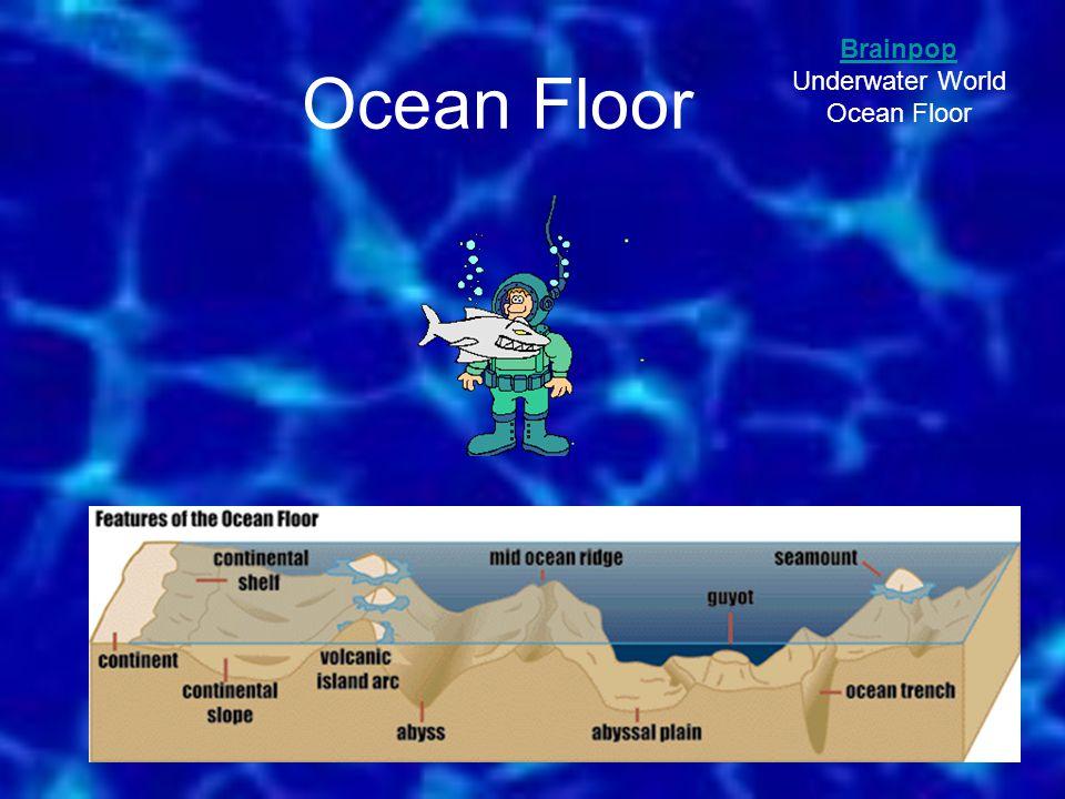 Ocean Floor Brainpop Underwater World Ocean Floor