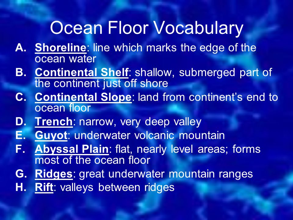 Ocean Floor Vocabulary A.Shoreline: line which marks the edge of the ocean water B.Continental Shelf: shallow, submerged part of the continent just of