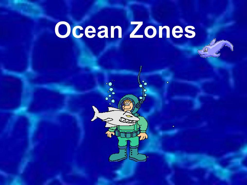 Ocean Zones