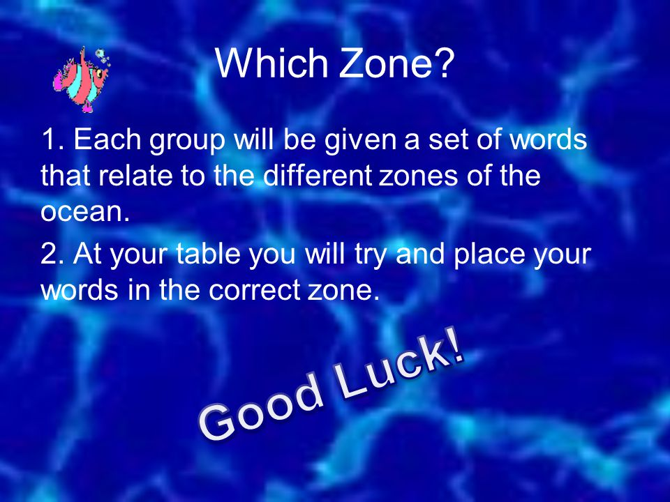 Which Zone.1.