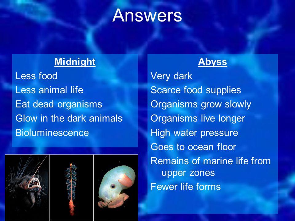 Abyss Very dark Scarce food supplies Organisms grow slowly Organisms live longer High water pressure Goes to ocean floor Remains of marine life from u