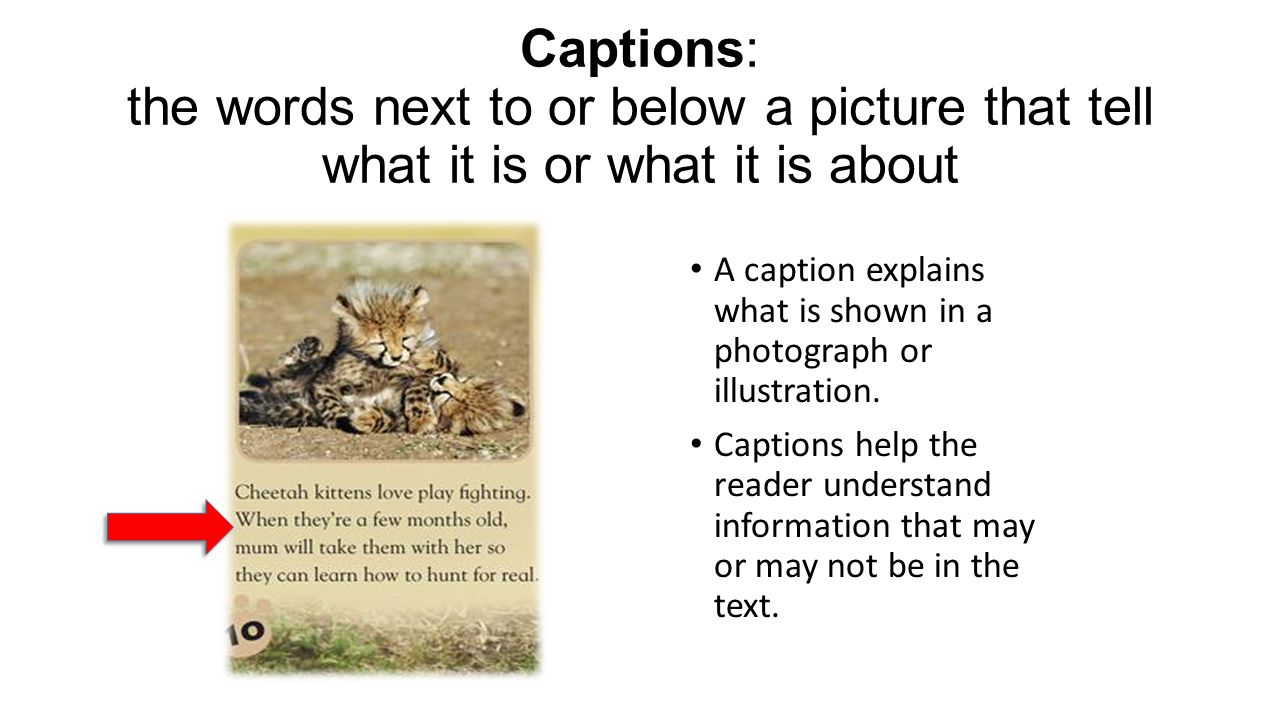 Captions: the words next to or below a picture that tell what it is or what it is about A caption explains what is shown in a photograph or illustrati
