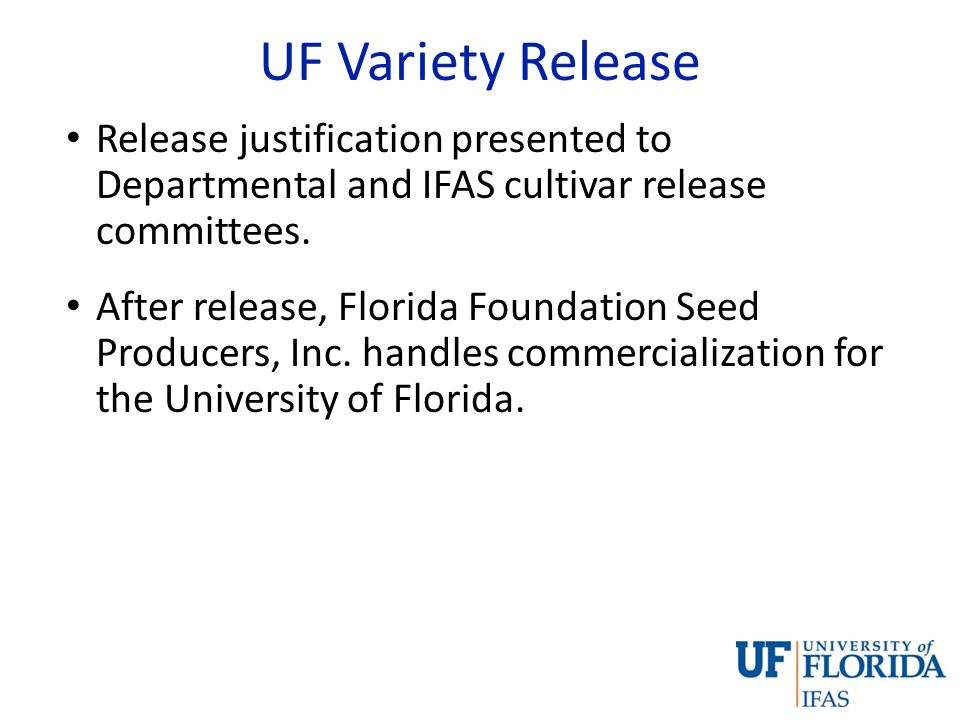 Royalties UF – IFAS policy on release, protection and introduction of plant material: 70% of the royalty payment comes directly back to the breeding program Royalty payments fund the breeding program: salary, students, and infrastructure