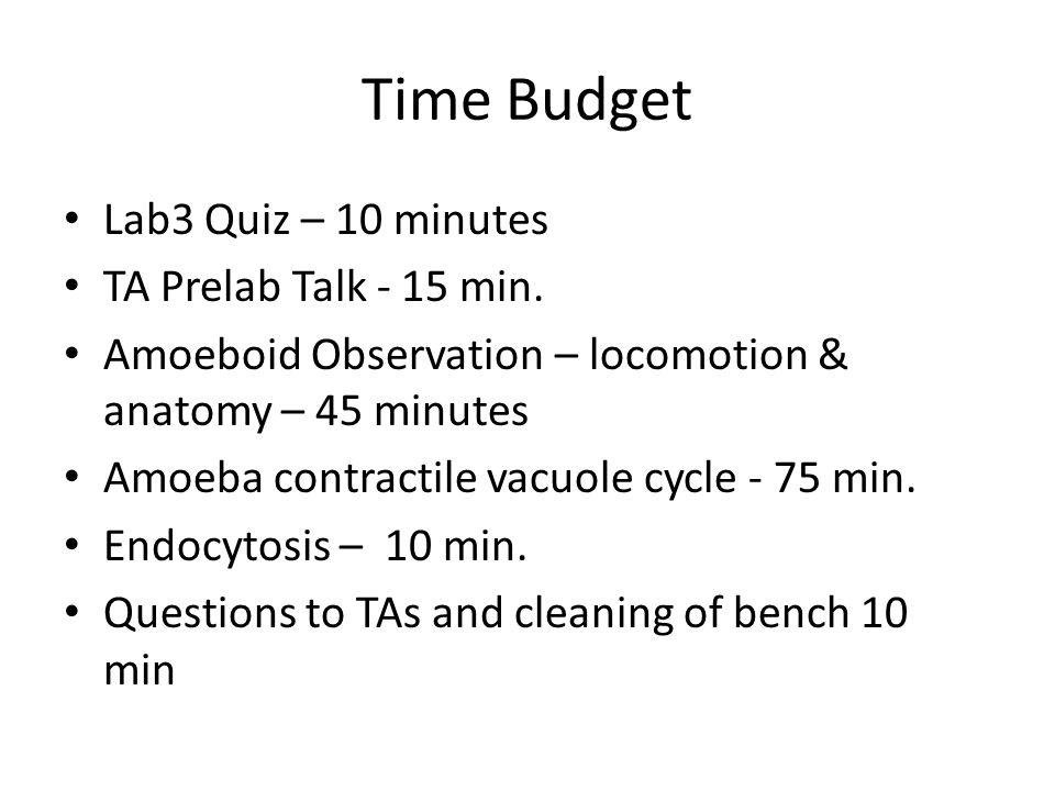 Time Budget Lab3 Quiz – 10 minutes TA Prelab Talk - 15 min.