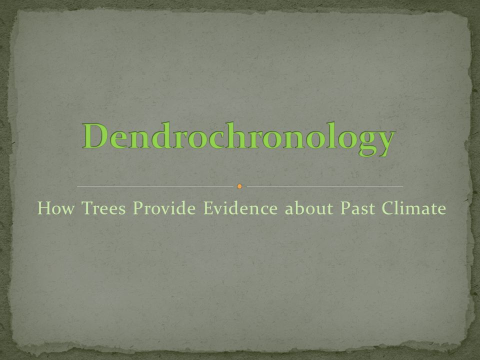 How Trees Provide Evidence about Past Climate