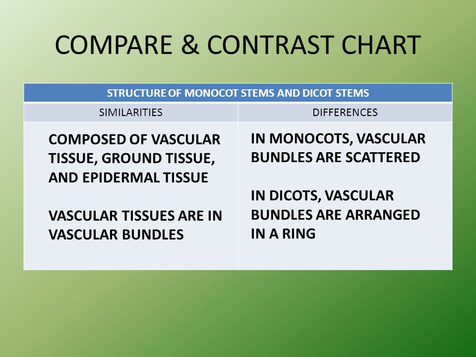 COMPARE & CONTRAST CHART STRUCTURE OF MONOCOT STEMS AND DICOT STEMS SIMILARITIESDIFFERENCES COMPOSED OF VASCULAR TISSUE, GROUND TISSUE, AND EPIDERMAL