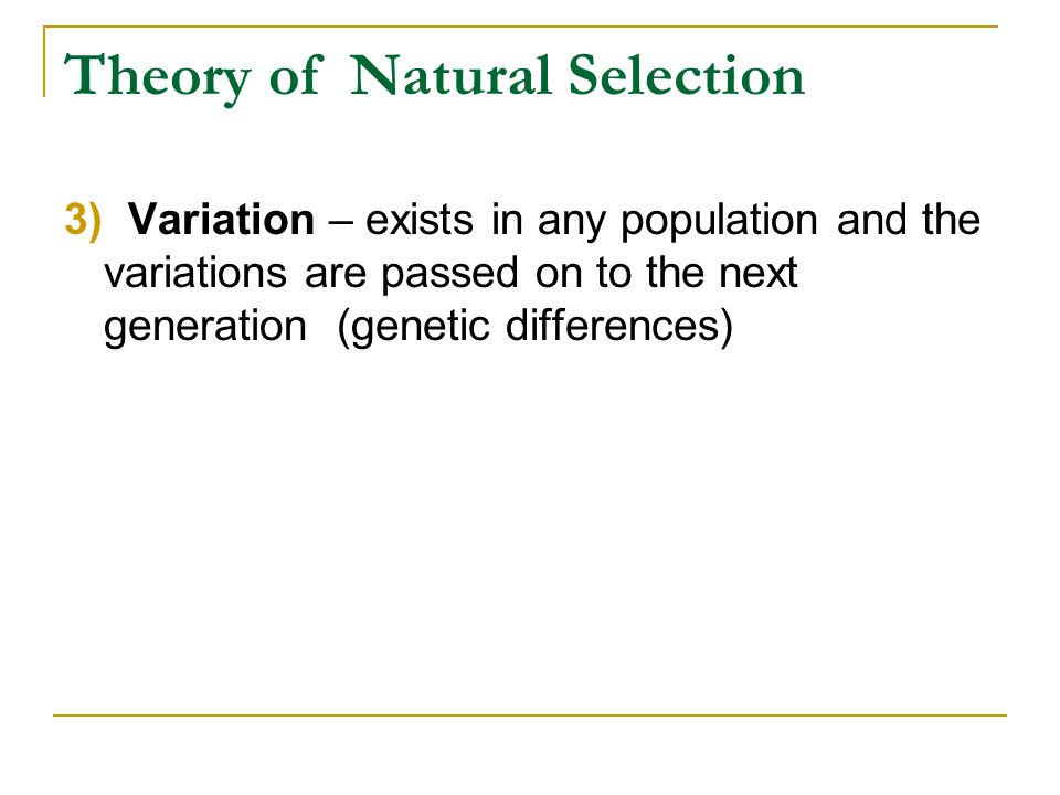 Theory of Natural Selection 3) Variation – exists in any population and the variations are passed on to the next generation (genetic differences)