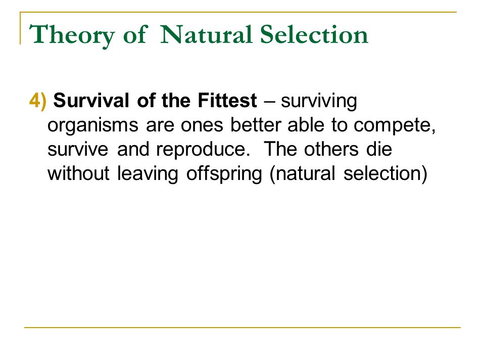 Theory of Natural Selection 4) Survival of the Fittest – surviving organisms are ones better able to compete, survive and reproduce. The others die wi