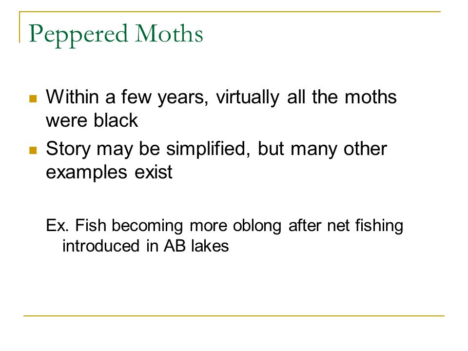 Within a few years, virtually all the moths were black Story may be simplified, but many other examples exist Ex. Fish becoming more oblong after net