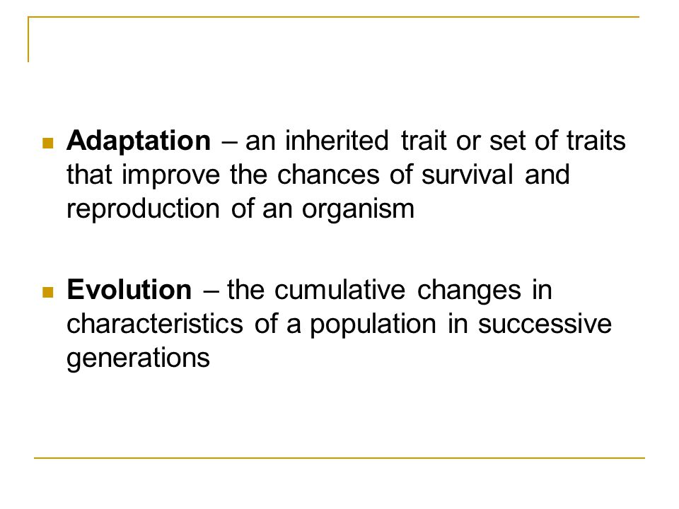 Two Versions of Evolution Gradualism: species gain small changes with time Punctuated Equilibrium: new species born suddenly with better adaptation - This adaptation rapidly becomes the only one in the population