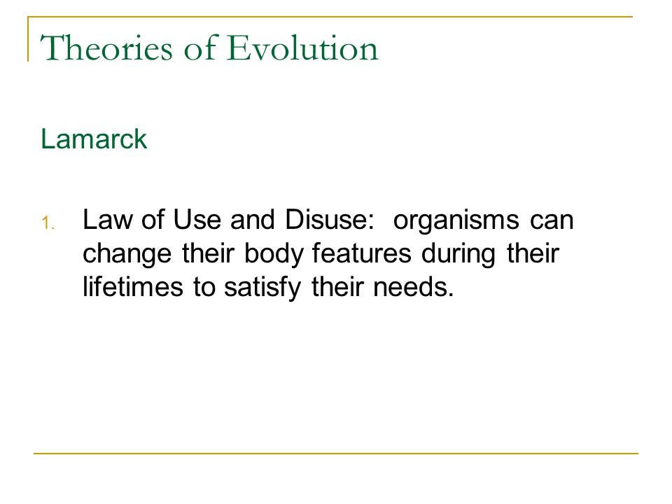 Theories of Evolution Lamarck 1. Law of Use and Disuse: organisms can change their body features during their lifetimes to satisfy their needs.