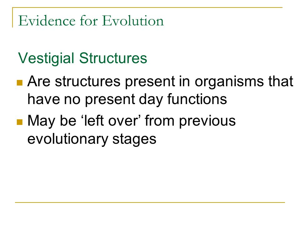 Evidence for Evolution Vestigial Structures Are structures present in organisms that have no present day functions May be 'left over' from previous ev