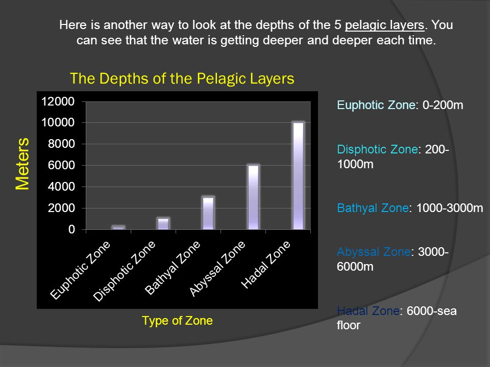The Depths of the Pelagic Layers Meters Type of Zone Here is another way to look at the depths of the 5 pelagic layers.