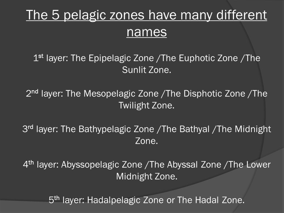 The 5 pelagic zones have many different names 1 st layer: The Epipelagic Zone /The Euphotic Zone /The Sunlit Zone.