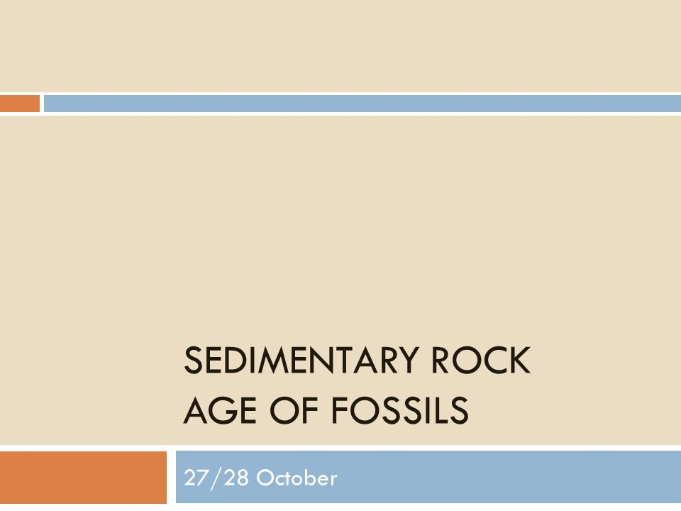 SEDIMENTARY ROCK AGE OF FOSSILS 27/28 October