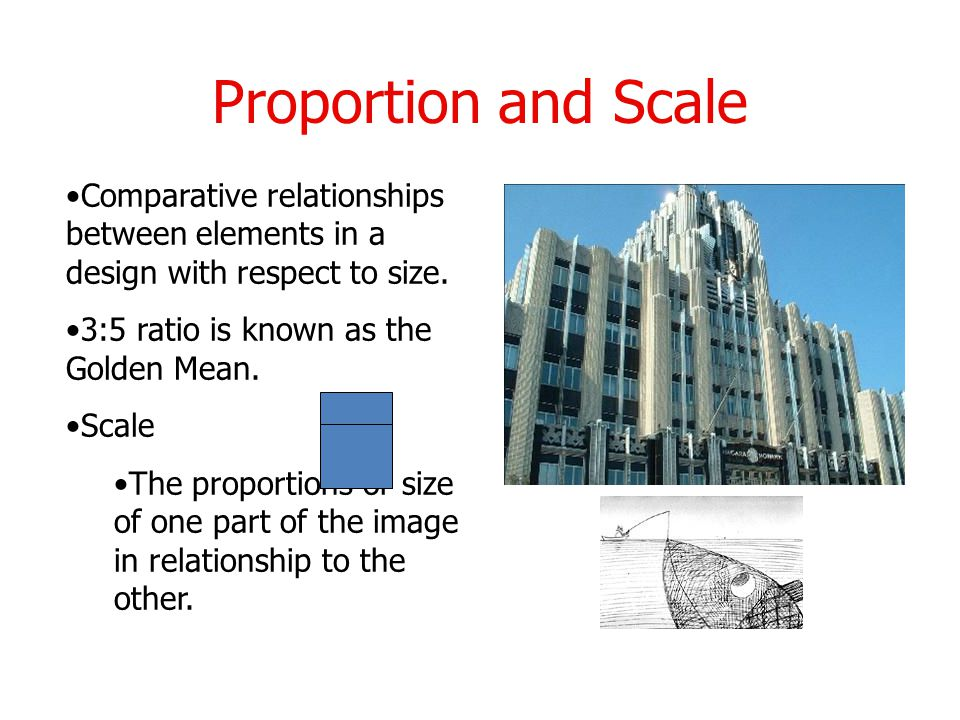 Proportion and Scale Comparative relationships between elements in a design with respect to size.