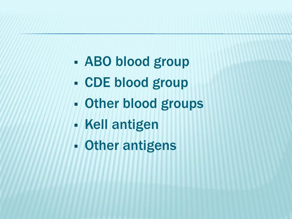  ABO blood group  CDE blood group  Other blood groups  Kell antigen  Other antigens