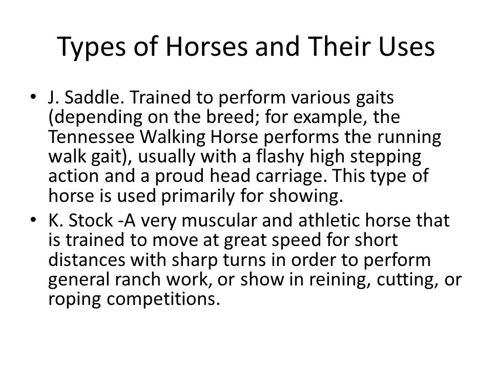 J. Saddle. Trained to perform various gaits (depending on the breed; for example, the Tennessee Walking Horse performs the running walk gait), usually