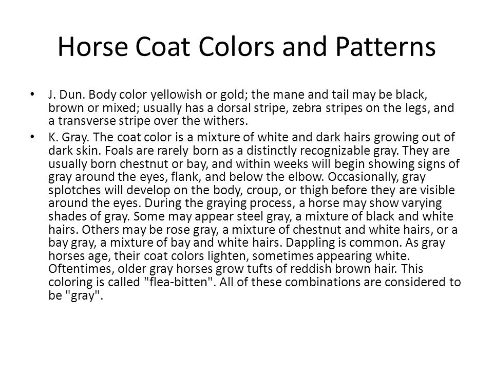 J. Dun. Body color yellowish or gold; the mane and tail may be black, brown or mixed; usually has a dorsal stripe, zebra stripes on the legs, and a tr