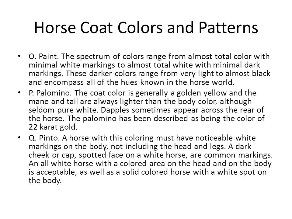 O. Paint. The spectrum of colors range from almost total color with minimal white markings to almost total white with minimal dark markings. These dar