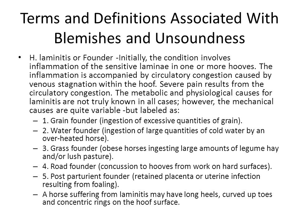 H. laminitis or Founder -Initially, the condition involves inflammation of the sensitive laminae in one or more hooves. The inflammation is accompanie