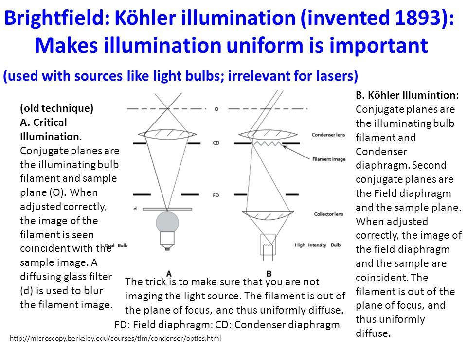 (old technique) A. Critical Illumination. Conjugate planes are the illuminating bulb filament and sample plane (O). When adjusted correctly, the image