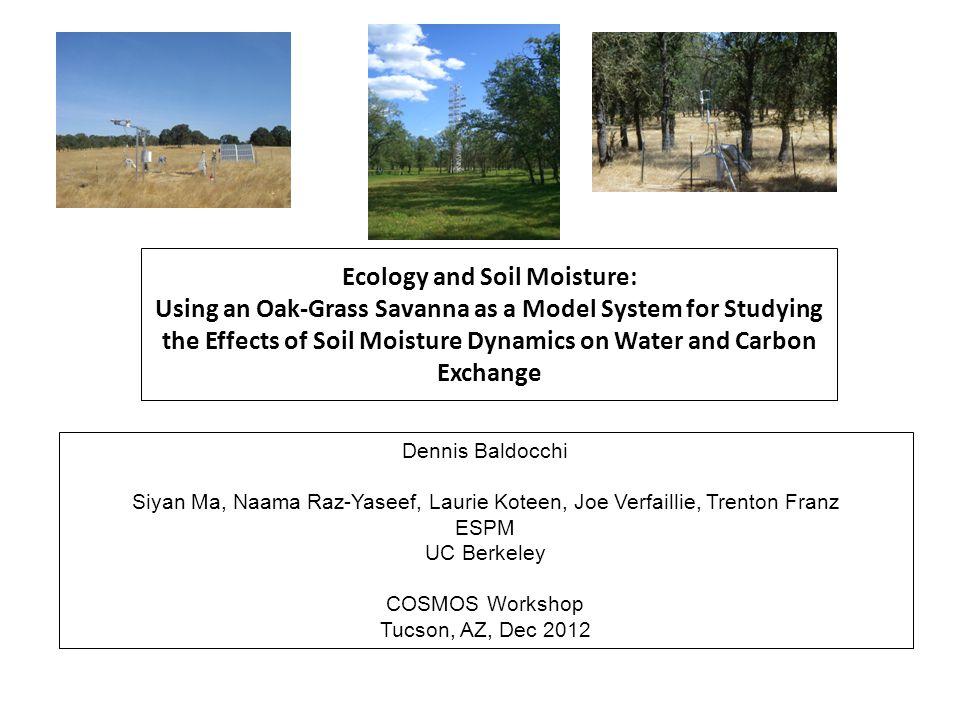 Impact of Rain Pulse, Timing of Rain and Photodegradation on Ecosystem Respiration Baldocchi et al, JGR, Biogeosciences, 2006