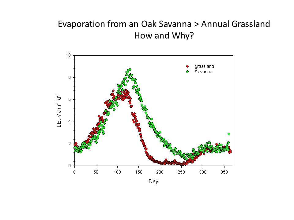 Evaporation from an Oak Savanna > Annual Grassland How and Why?