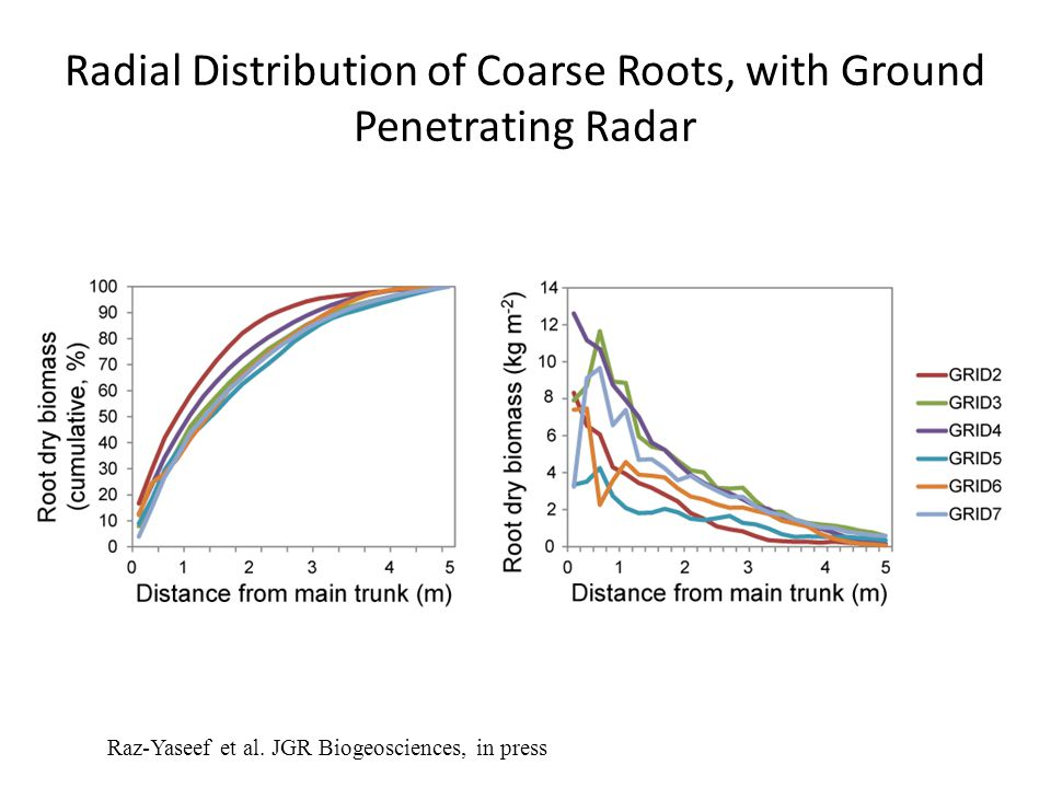 Radial Distribution of Coarse Roots, with Ground Penetrating Radar Raz-Yaseef et al.