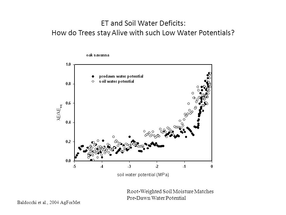 Baldocchi et al., 2004 AgForMet ET and Soil Water Deficits: How do Trees stay Alive with such Low Water Potentials? Root-Weighted Soil Moisture Matche