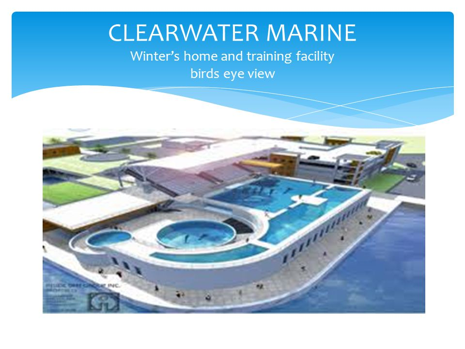 CLEARWATER MARINE Winter's home and training facility birds eye view