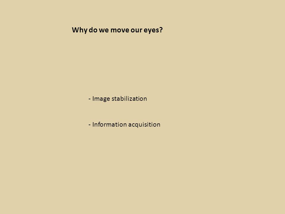 Why do we move our eyes - Image stabilization - Information acquisition