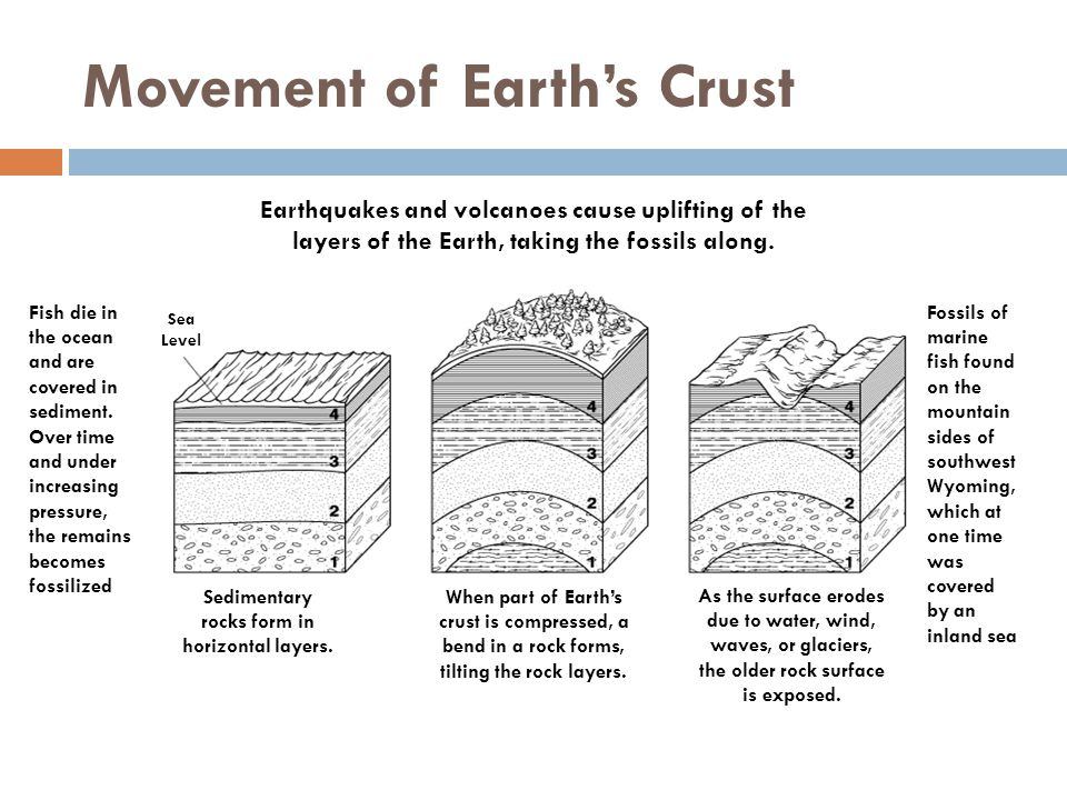 Movement of Earth's Crust Sea Level Sedimentary rocks form in horizontal layers. When part of Earth's crust is compressed, a bend in a rock forms, til