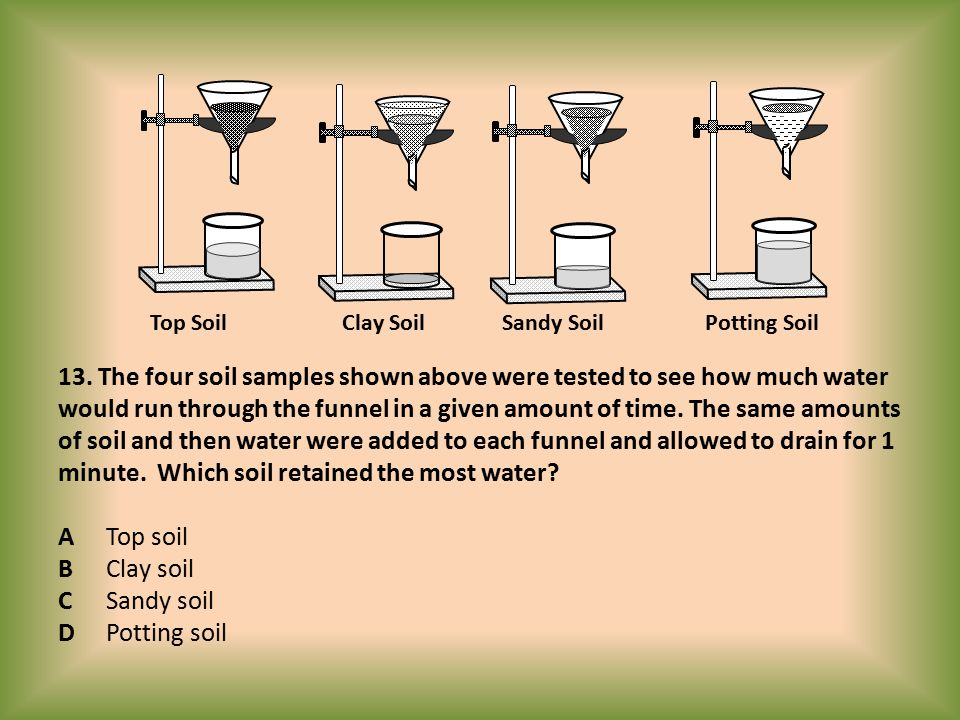 13. The four soil samples shown above were tested to see how much water would run through the funnel in a given amount of time. The same amounts of so