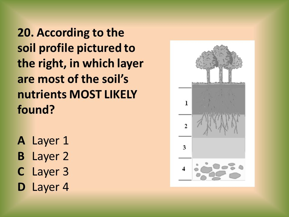 20. According to the soil profile pictured to the right, in which layer are most of the soil's nutrients MOST LIKELY found? ALayer 1 BLayer 2 CLayer 3