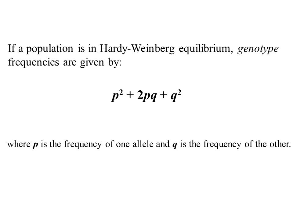 If a population is in Hardy-Weinberg equilibrium, genotype frequencies are given by: p 2 + 2pq + q 2 where p is the frequency of one allele and q is the frequency of the other.