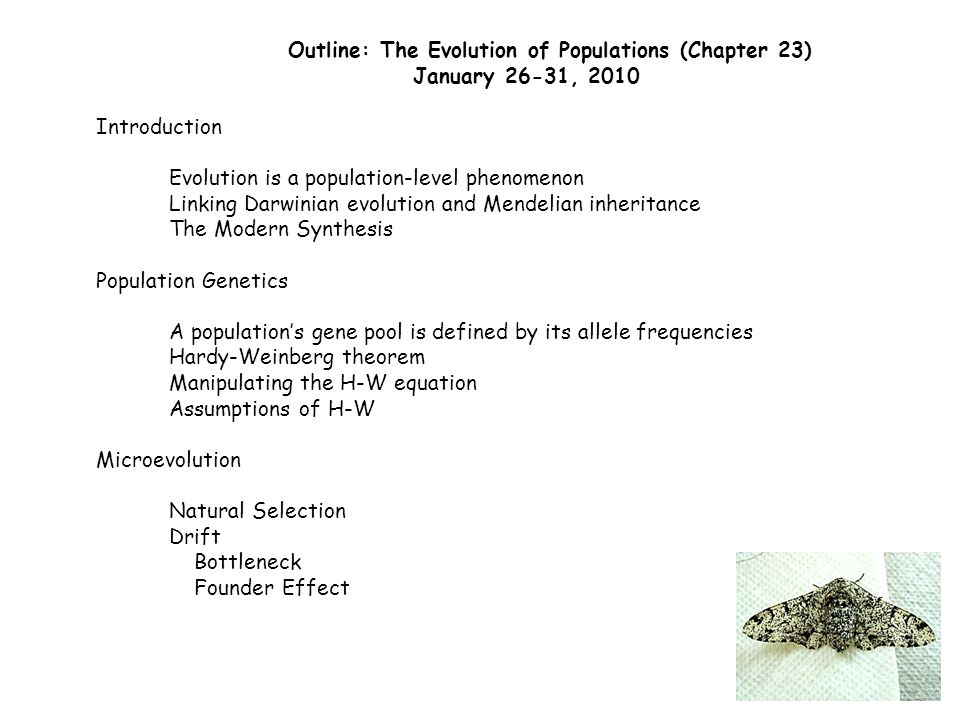Outline: The Evolution of Populations (Chapter 23) January 26-31, 2010 Introduction Evolution is a population-level phenomenon Linking Darwinian evolution and Mendelian inheritance The Modern Synthesis Population Genetics A population's gene pool is defined by its allele frequencies Hardy-Weinberg theorem Manipulating the H-W equation Assumptions of H-W Microevolution Natural Selection Drift Bottleneck Founder Effect