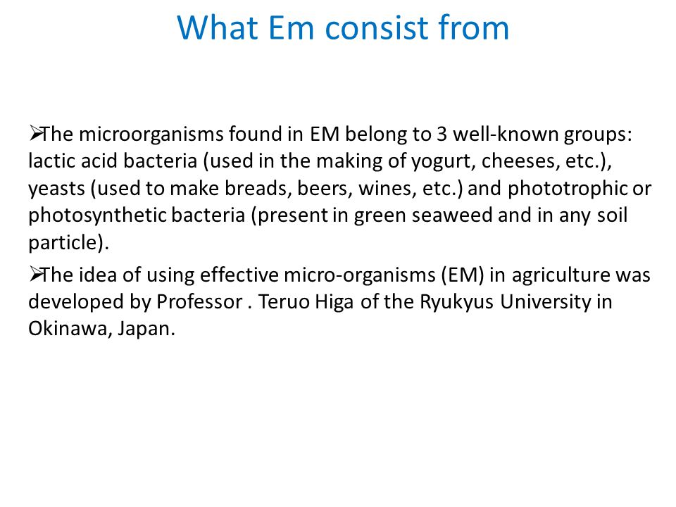 What Em consist from  The microorganisms found in EM belong to 3 well-known groups: lactic acid bacteria (used in the making of yogurt, cheeses, etc.), yeasts (used to make breads, beers, wines, etc.) and phototrophic or photosynthetic bacteria (present in green seaweed and in any soil particle).