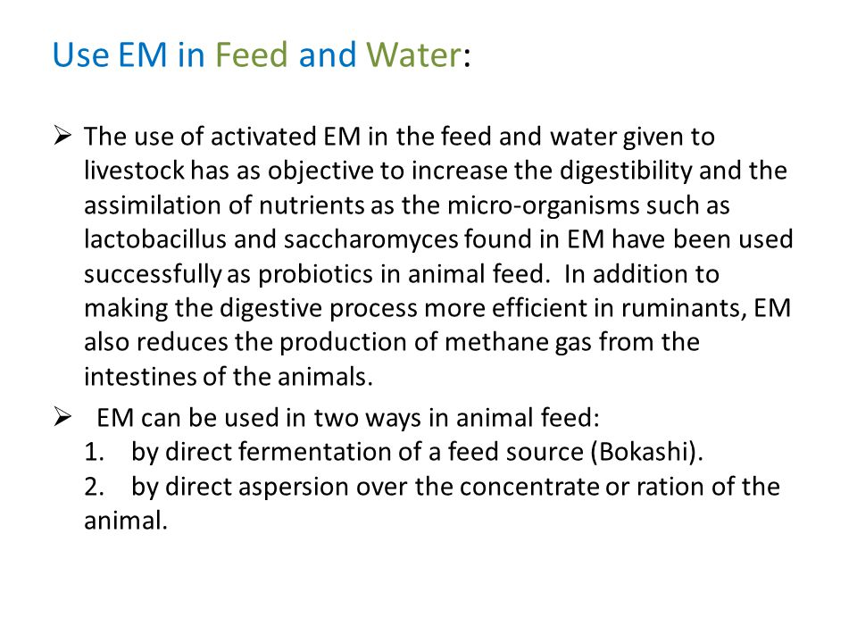 Use EM in Feed and Water:  The use of activated EM in the feed and water given to livestock has as objective to increase the digestibility and the as