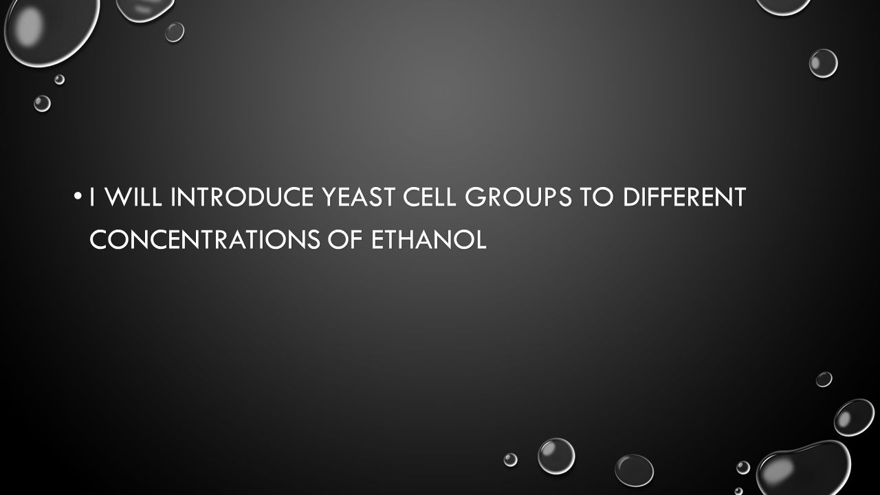 I WILL INTRODUCE YEAST CELL GROUPS TO DIFFERENT CONCENTRATIONS OF ETHANOL I WILL INTRODUCE YEAST CELL GROUPS TO DIFFERENT CONCENTRATIONS OF ETHANOL