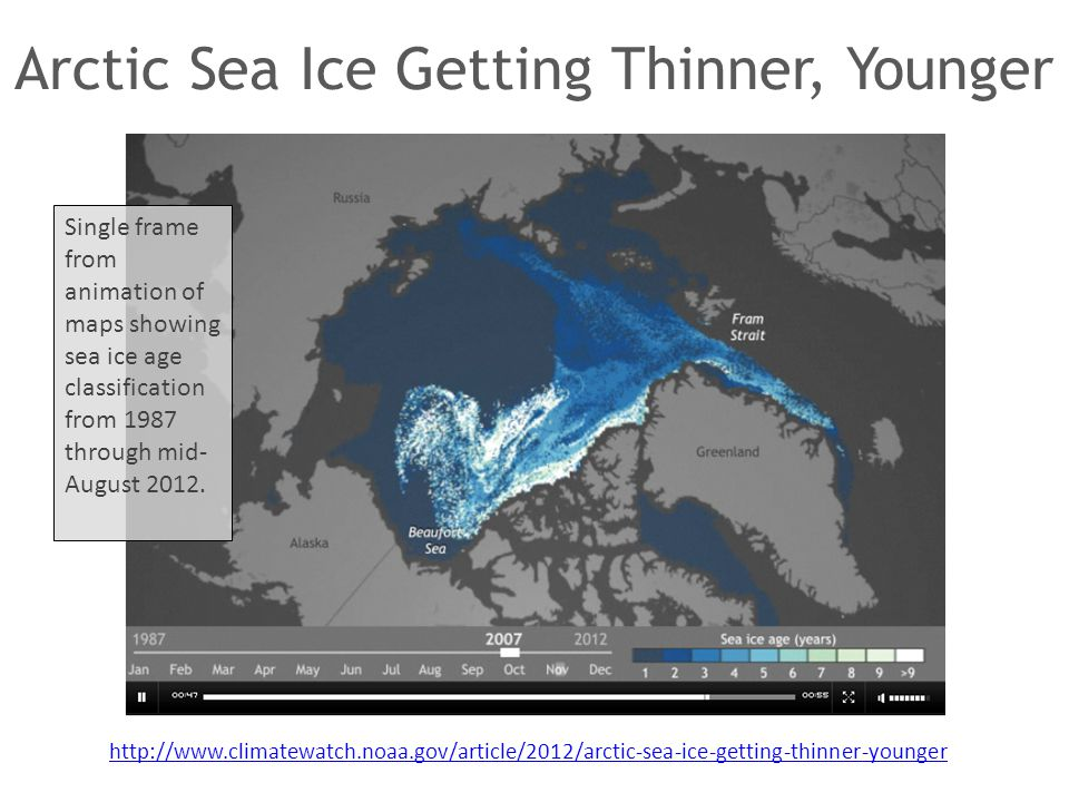 Arctic Sea Ice Getting Thinner, Younger Single frame from animation of maps showing sea ice age classification from 1987 through mid- August 2012. htt