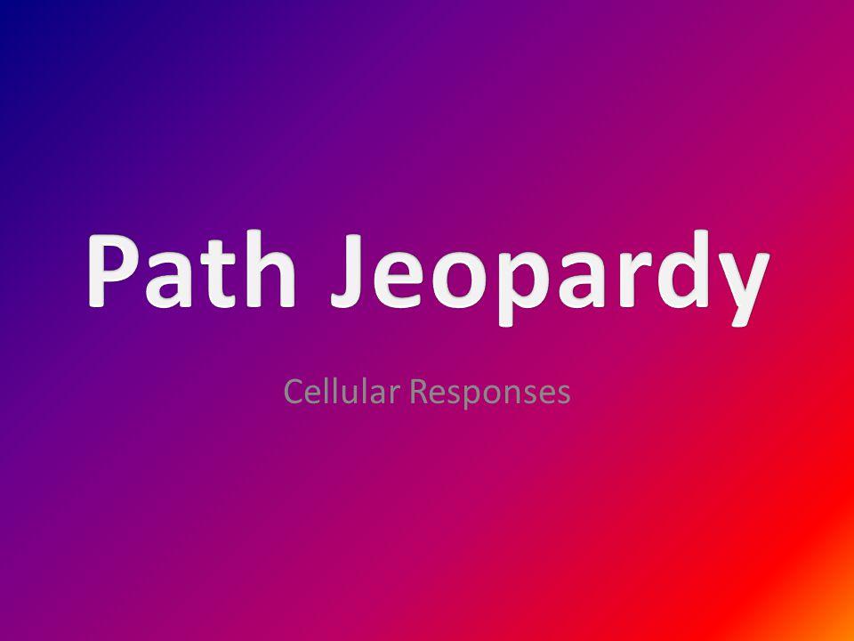 Cellular Responses