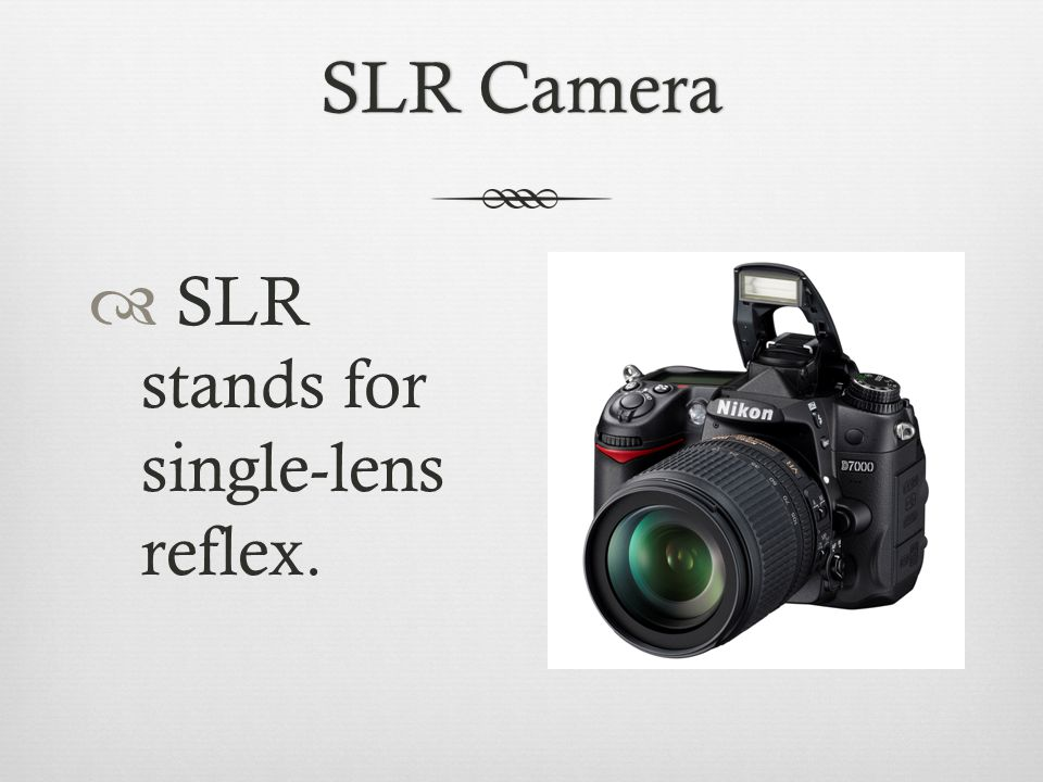 SLR CameraSLR Camera  SLR stands for single-lens reflex.