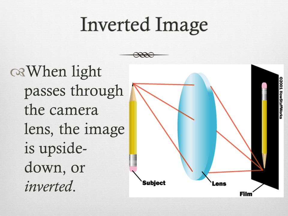 Inverted ImageInverted Image  When light passes through the camera lens, the image is upside- down, or inverted.