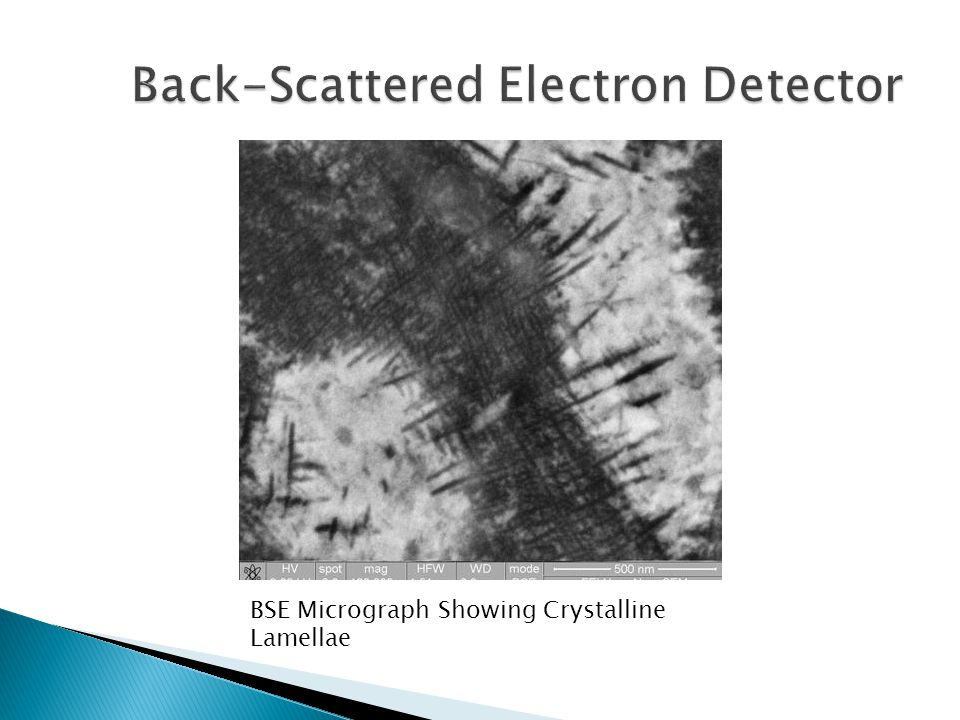 BSE Micrograph Showing Crystalline Lamellae