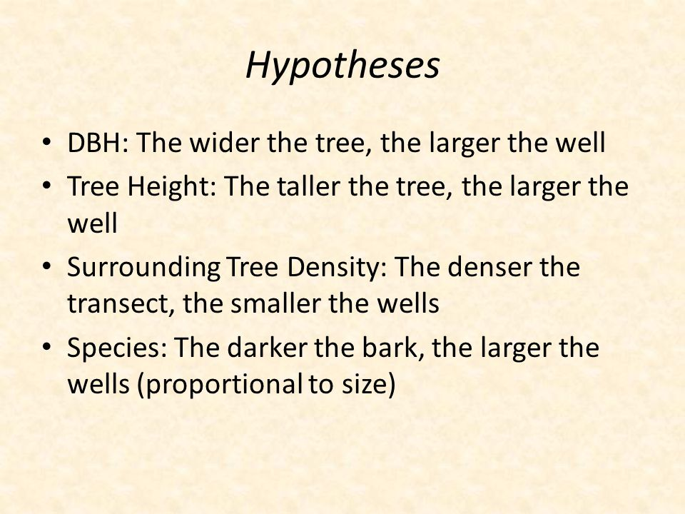 Hypotheses DBH: The wider the tree, the larger the well Tree Height: The taller the tree, the larger the well Surrounding Tree Density: The denser the transect, the smaller the wells Species: The darker the bark, the larger the wells (proportional to size)
