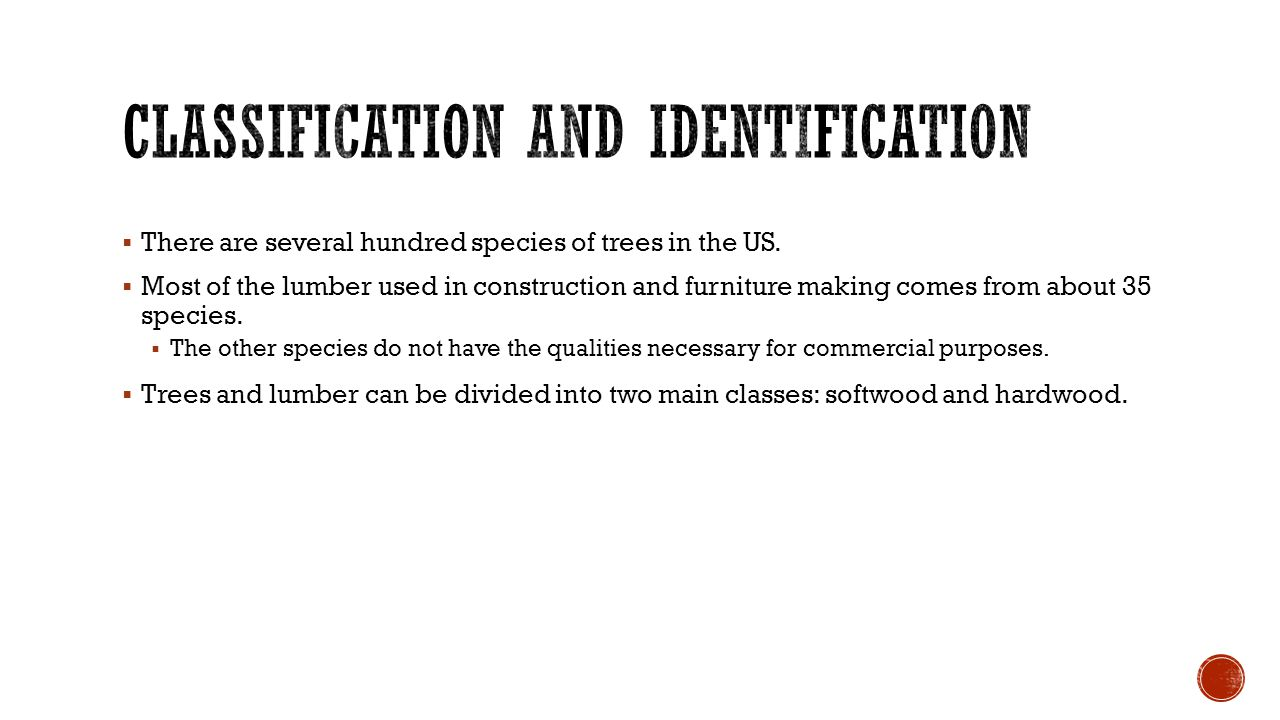  There are several hundred species of trees in the US.  Most of the lumber used in construction and furniture making comes from about 35 species. 